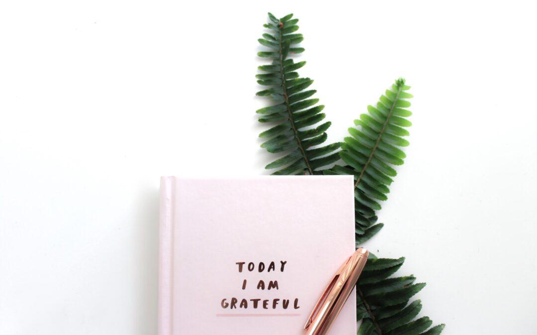 Isprobaj Dnevnik zahvalnosti