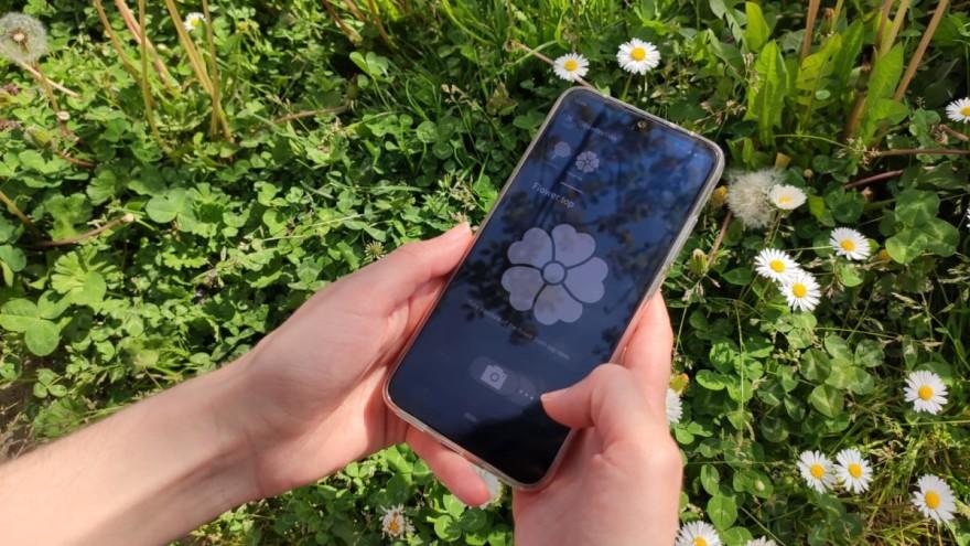 Besplatna mobilna aplikacija za identifikaciju biljaka