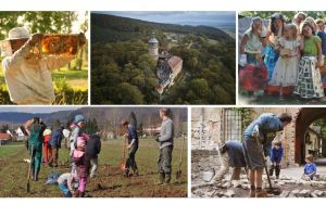 Training for Future: Ecovillage Design Education 2020